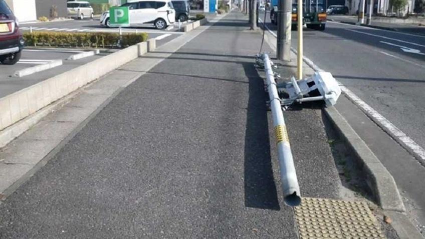 Nước tiểu chó làm giảm tuổi thọ cột đèn giao thông ở Nhật Bản