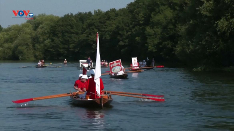 Lễ hội Đếm thiên nga trên sông Thames của Hoàng gia Anh quay trở lại