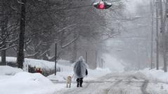 Mỹ: Hàng chục người thiệt mạng do thời tiết khắc nghiệt
