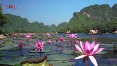 Ninh Bình đẩy mạnh phát triển du lịch nông nghiệp - nông thôn