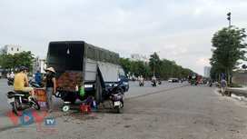 Hà Nội: Ô tô 'vô tư' biến lòng đường thành điểm kinh doanh trái cây