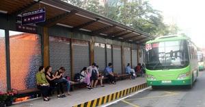 Thêm 8 tuyến xe buýt tại TP.HCM hoạt động trở lại