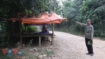 Vi phạm trong lĩnh vực bảo vệ môi trường, Công ty CP Năng lượng Bắc Việt bị xử phạt 190 triệu đồng