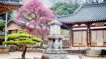 Chiêm ngưỡng 33 ngôi chùa cổ đẹp nhất Hàn Quốc