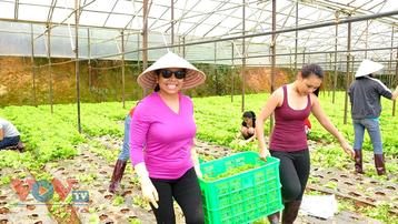 Vì sao Đà Lạt – Lâm Đồng tạm dừng phát triển du lịch canh nông?