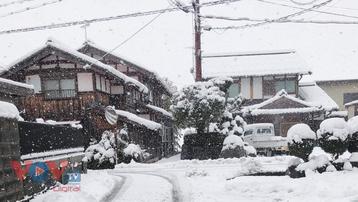 Tuyết liên tục rơi dày tại Nhật Bản, hàng chục người thiệt mạng