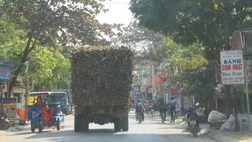 Nguy cơ mất ATGT từ xe tải chở mía trên nhiều tuyến đường ở Thanh Hóa