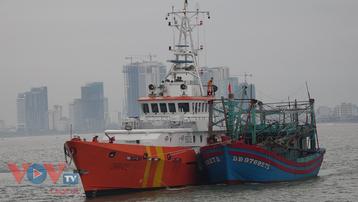 Bình Định: Tàu cá cùng 7 ngư dân gặp nạn trên biển