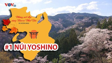 Những Nét Đẹp Vùng Kansai Nhật Bản: Núi Yoshino
