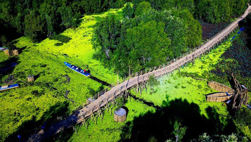 Khách du xuân rừng tràm Trà Sư, 'check-in' cầu tre dài nhất Việt Nam