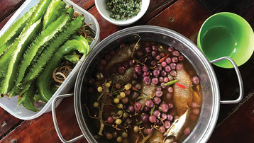 Độc đáo các món ăn đặc sản rừng