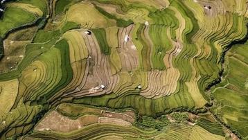 Nhiếp ảnh gia Việt Nam đoạt Huy chương vàng quốc tế