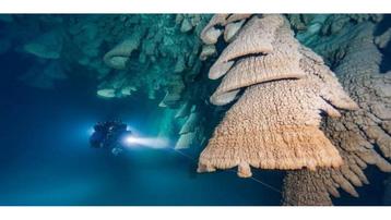 Chuông địa ngục trong hang động dưới nước
