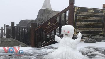 Mưa tuyết trắng đỉnh Fansipan trước thềm năm mới