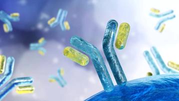 Séc và Thụy Sĩ phát triển kháng thể kép có khả năng chống lại các đột biến của virus SARS-CoV-2