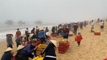 Trúng đậm cá nục mộng, ngư dân Quảng Bình thu tiền triệu mỗi đêm
