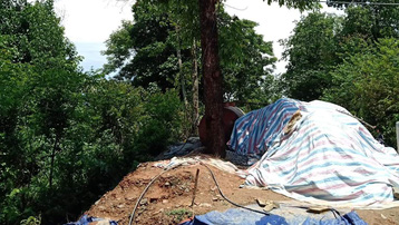 Trú mưa dưới gốc cây, một người ở Điện Biên bị sét đánh tử vong