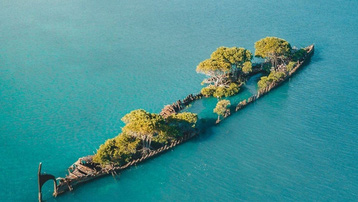 Xác tàu bỏ hoang hóa 'rừng nổi' giữa biển thu hút du khách đến check-in