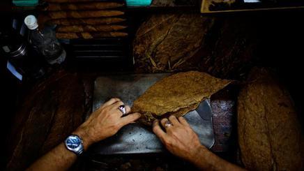 Xì gà Habanos ở Havana, Cuba