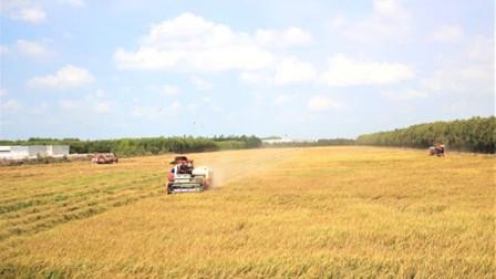 Vụ lúa xuân năm 2020-2021: Nỗ lực bảo đảm đủ nước gieo cấy