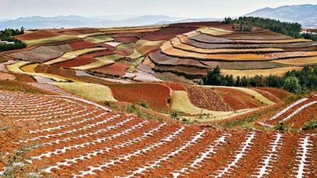 8 lý do tại sao Vân Nam là điểm du lịch ẩm thực độc đáo nhất Trung Quốc, thậm chí nhất thế giới