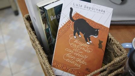 Những chú mèo kỳ lạ trong văn chương