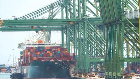 Doanh nghiệp khốn đốn vì cước vận chuyển container bất ngờ tăng nhiều lần