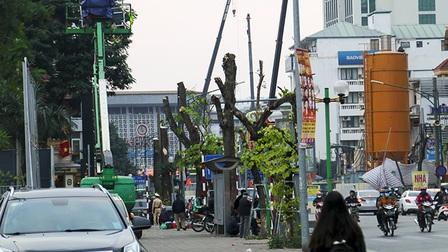 Hà Nội tiếp tục di chuyển 40 cây xanh để thi công Ga S12