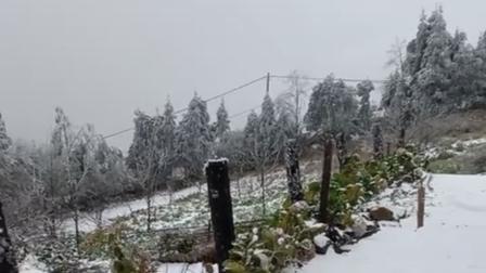 Tuyết rơi tuyệt đẹp ở Y Tý - Lào Cai