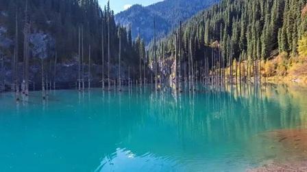 Chiêm ngưỡng những khu rừng ngập nước đẹp sững sờ
