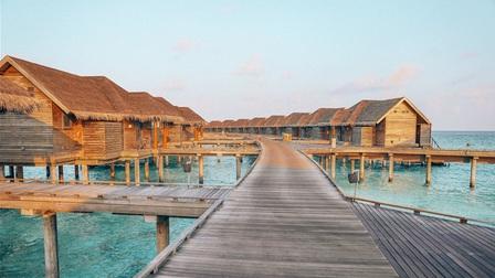 Hòn đảo thiên đường được hình thành từ phân cá thu hút du khách thế giới