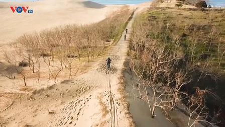 Những Nét Đẹp Vùng Kansai Nhật Bản: Đồi cát Tottori