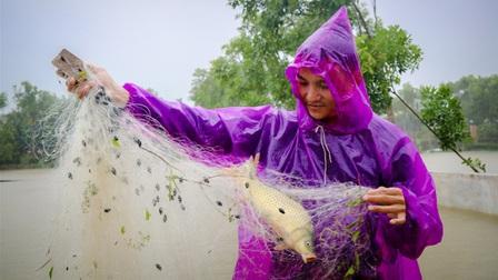 Nước dâng nhanh, người dân Hà Tĩnh giăng lưới bắt cá giữa đường