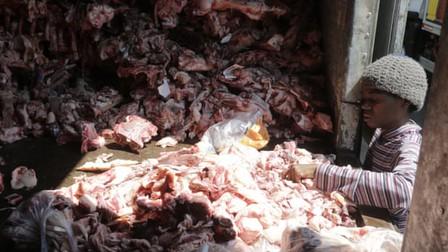 Bức ảnh người nghèo bới xác động vật tìm thức ăn gây chấn động Brazil