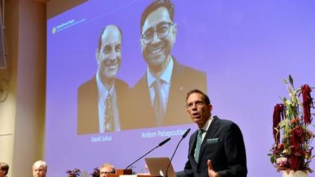 Vì sao khám phá về nhiệt độ và xúc giác đoạt giải Nobel Y sinh 2021