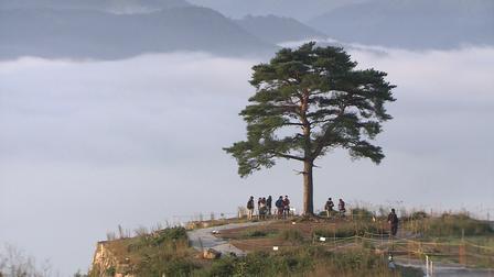 12 Nét Đẹp Vùng Kansai Nhật Bản: Di tích lâu đài Takeda
