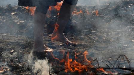 Mục sở thị nghi lễ đi chân trần trên than nóng ở Nhật Bản