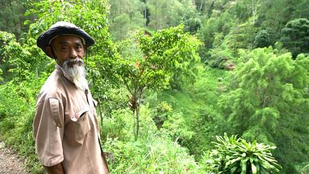 Indonesia: Chiến binh sinh thái 69 tuổi vắt kiệt sức lực và tài sản để phủ xanh đồi trọc