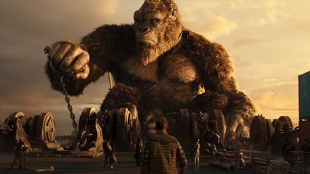'Godzilla vs. Kong' cán mốc doanh thu 100 tỷ đồng tại Việt Nam