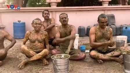 Ấn Độ: Người dân dùng phân và nước tiểu bò để chữa Covid-19