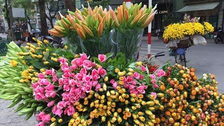 Những xe hoa chở mùa qua phố