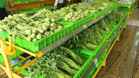 Thành lập Tổ công tác chỉ đạo sản xuất, kết nối cung ứng tiêu thụ nông sản tại các tỉnh, thành phố phía Nam
