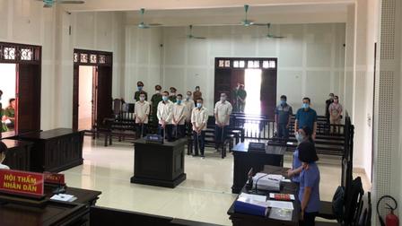 Quảng Ninh: Bắt trộm lợn của công ty, 8 đối tượng nhận án 52 năm tù