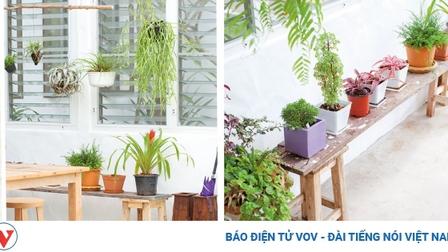 Ngôi nhà dành cho gia chủ thích cuộc sống đơn giản, nhẹ nhàng
