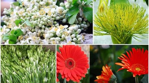 Hoa bưởi, hoa cau... đắt hàng dịp rằm tháng Giêng