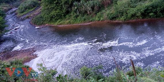 Bắt quả tang nhà máy giấy xả thải ra sông Phó Đáy