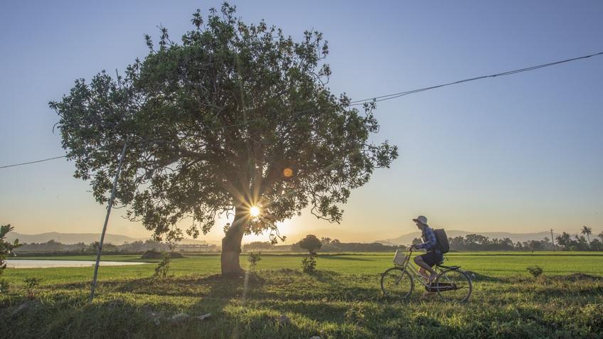 Quảng Ngãi bình yên dưới góc nhìn của nhiếp ảnh gia xa quê