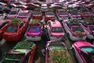 Thái Lan: Trồng rau trên nóc xe taxi